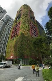 Singapore - 038