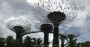 Singapore - 063