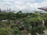Singapore - 066