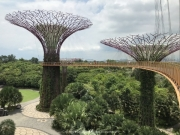 Singapore - 075