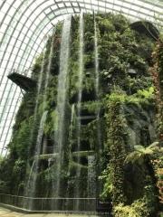 Singapore - 081