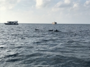 Malediven 02-2019 -052