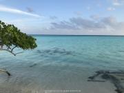 Malediven 02-2019 -068