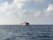 Malediven 02-2019 -047