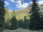 Tux-Finkenberg-Wandern-2019-163