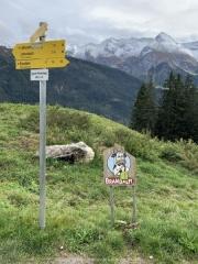 Tux-Finkenberg-Wandern-2019-270
