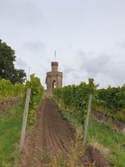 Bad-Duerkheim-10-2020-089
