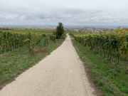 Bad-Duerkheim-10-2020-109