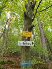 Bad-Duerkheim-10-2020-134